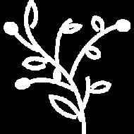 simbolo-de-oliq